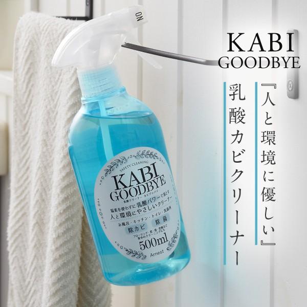 カビ取り カビ防止 お風呂 水回り 天然成分 乳酸クリー…