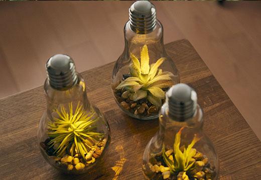 電球型テラリウムライト