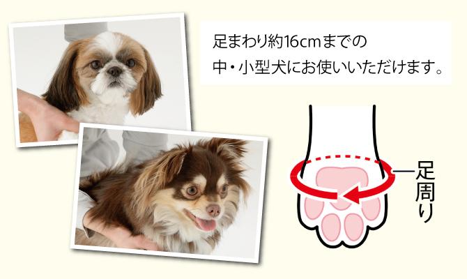 犬の足洗い 足ふき 犬 散歩 ペット用品 足あらい テレビで紹介 TV TBS メイドインジャパン アイデア 便利