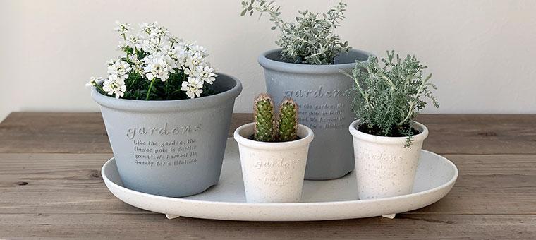ガーデニング植木鉢